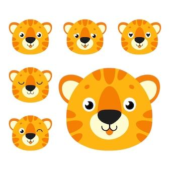 Tigre carina animale selvatico