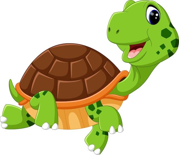 Cartone animato carino tartaruga