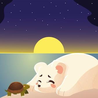 Illustrazione animale del fumetto di sonno dell'orso polare e della tartaruga sveglia