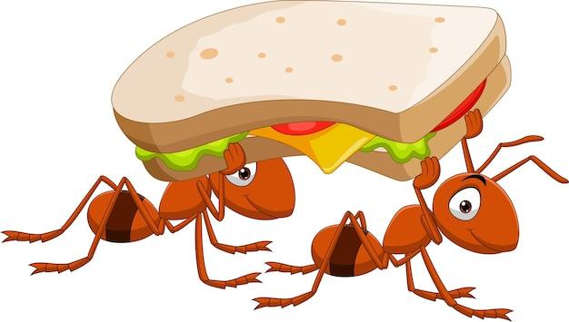 Due formiche sveglie che trasportano un panino
