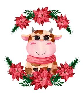 Toro sveglio dell'acquerello nei fiori della stella di natale di natale, simbolo dell'anno
