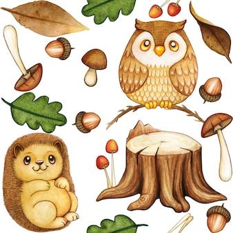 Modello di bosco carino acquerello con gufo e riccio