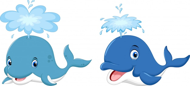 Cartone animato carino balena