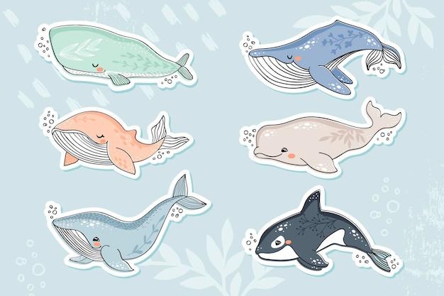 Illustrazione disegnata a mano di balene carine per la collezione di adesivi per bambini
