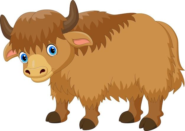 Cartone animato carino yak isolato su bianco