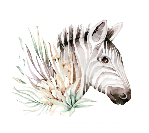 Illustrazione sveglia del ritratto dell'acquerello della zebra. animali esotici natura africana. animale selvatico della savana