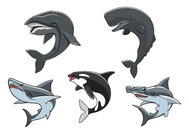 Predatori marini pericolosi come simboli dell'acquario dello zoo Vettore Premium