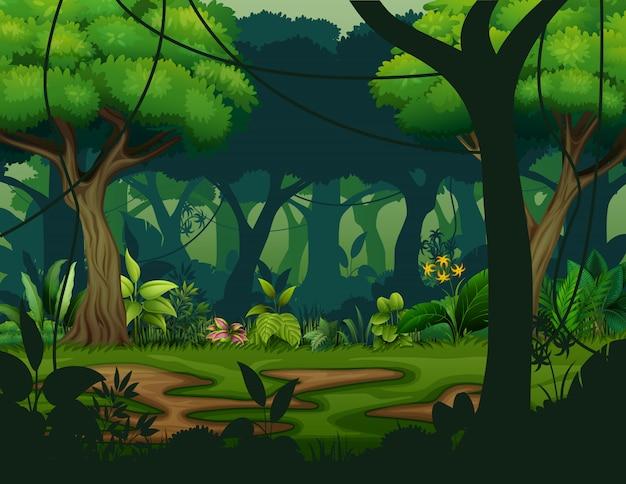 Foresta pluviale scura con sfondo di alberi