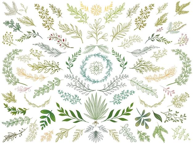 Set di foglie di decoro
