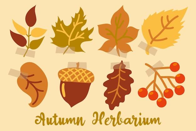 Erbario decorativo autunnale con foglie un ramo di bacche e una ghianda foglie d'autunno