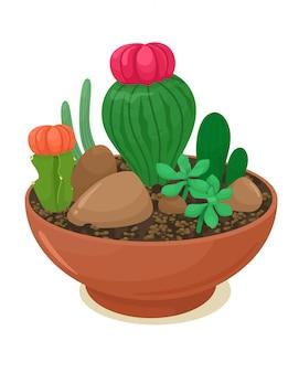 Cactus decorativi e piante grasse in un contenitore di fiori. illustrazione in stile cartone animato piatto. sfondo bianco.