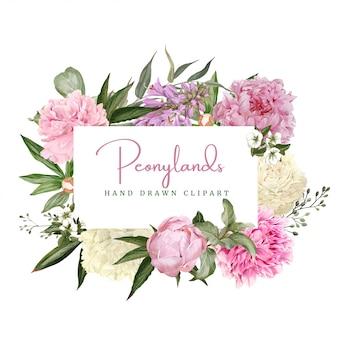 Cornice floreale dell'acquerello decorativo, peonie bianche e rosa