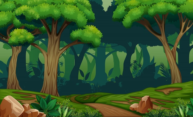 Scena profonda della foresta con la traccia nell'illustrazione di legni