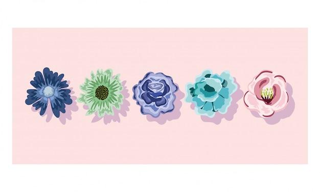 Disegno floreale della natura dell'ornamento della decorazione delicata dei fiori