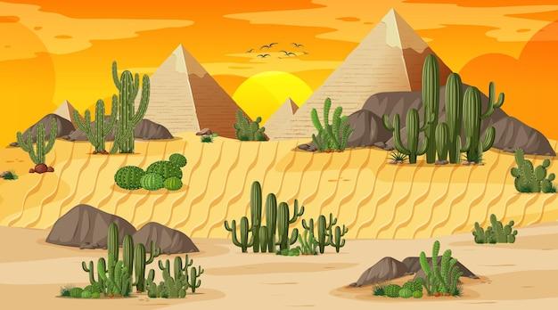 Paesaggio della foresta del deserto alla scena del tramonto con la piramide di giza