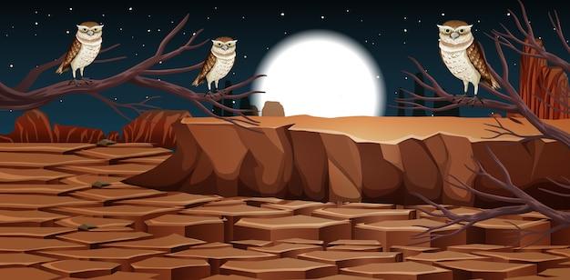 Deserto con montagne rocciose e paesaggio di animali del deserto alla scena notturna