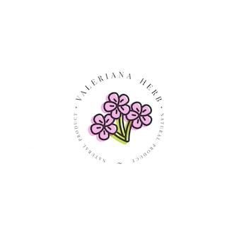 Modello di progettazione logo ed emblema erba-valeriana sana. logo in stile lineare alla moda isolato.
