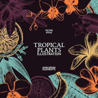 Design con inchiostro disegnato a mano di frutta tropicale, fiori e foglie schizzo. sfondo di piante esotiche vintage