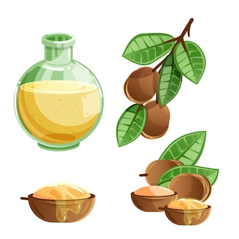 Pacchetto di elementi olio di argan dettagliato