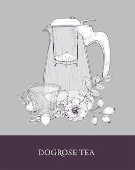 Disegno dettagliato della brocca di vetro con colino, tazza di tè e fiori di rosa canina, foglie e fianchi rossi o frutti su grigio