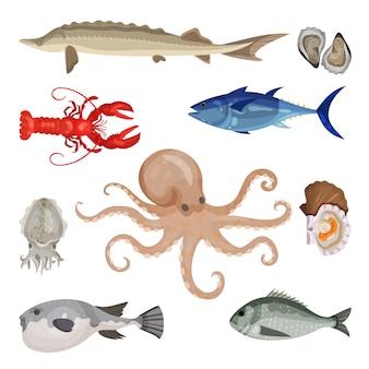 Insieme dettagliato di frutti di mare diversi. prodotti marini commestibili. creature marine. pesce, aragosta e molluschi