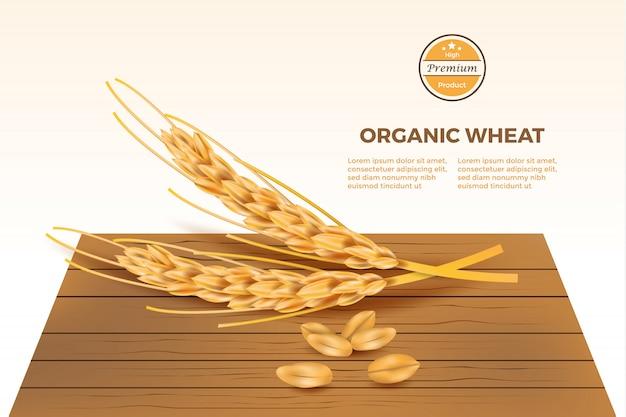 Vettore dettagliato del grano sulla tavola di legno