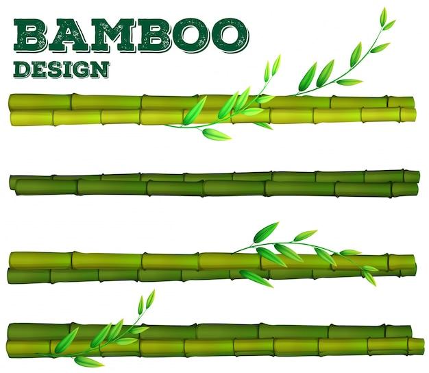 Disegno diverso di bambù con gambo e foglie