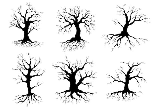 Sagome nere differenti dell'albero deciduo senza foglie di inverno con le radici, isolate su bianco