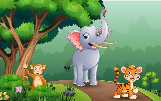 Un diverso tipo di animali che camminano lungo la foresta