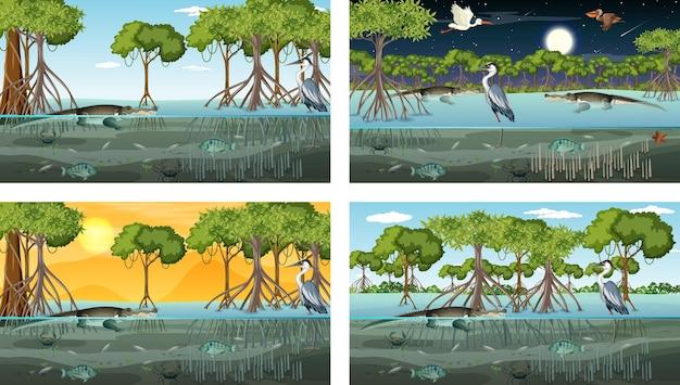 Diverse scene di paesaggi di foreste di mangrovie con animali e piante