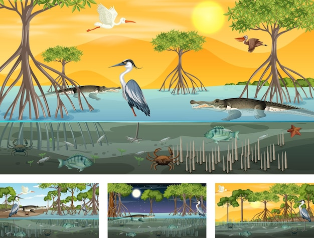 Diverse scene con paesaggio di foresta di mangrovie con animali e piante