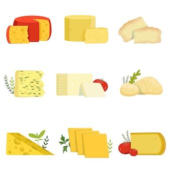 Diversi tipi di pezzi di formaggio, tipo popolare di illustrazioni di formaggio