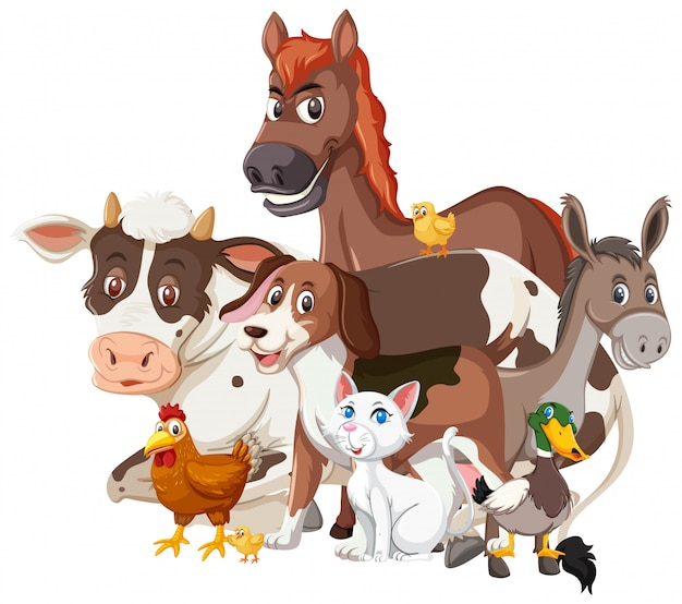Diversi tipi di animali da allevamento su sfondo bianco