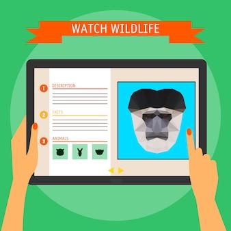 Tavoletta digitale con ritratto di cartone animato scimmia colobus e sito web sulla fauna selvatica. illustrazione in stile piatto alla moda, isolato su sfondo verde brillante ed elegante con slogan per l'uso nel design