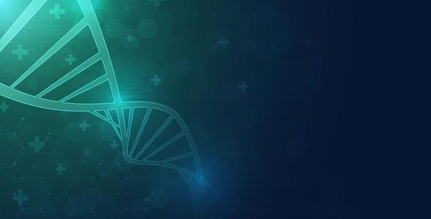 Molecola a spirale del dna spirale dell'elica della molecola del dna wireframe poligonale astratto scienza medica