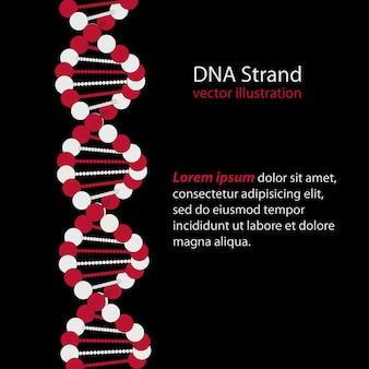 Dna strand, codice genetico