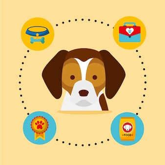 Cibo cane beagle medaglia veterinaria ciotola