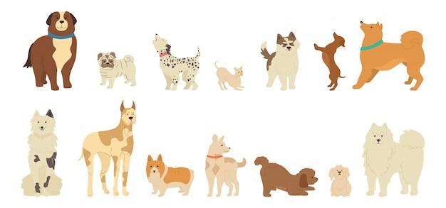 Collezione di simpatici cartoni animati di cane carattere