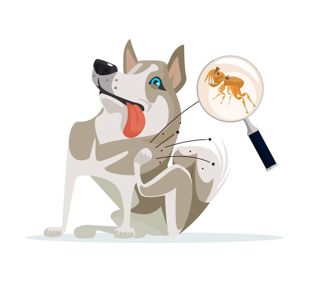 Il personaggio del cane graffia le pulci