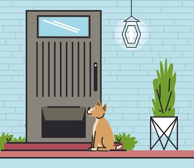 Cane seduto in porta