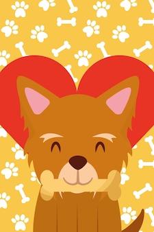 Il cane con le zampe in bocca ama il cuore