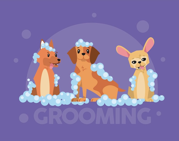 Set da bagno cartoni animati per cani