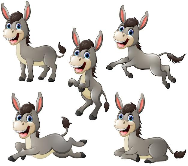 Raccolta di set cartone animato asino