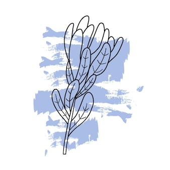Doodle pianta su un punto astratto colorato. fiore disegnato con linee nere. illustrazione di vettore in stile piano su priorità bassa bianca.
