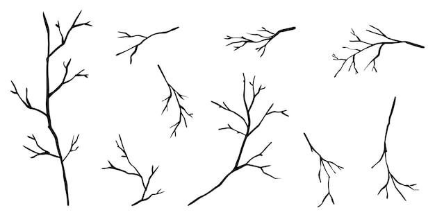 Doodle sagome del ramo di alberi isolati su bianco background.vector illustrazione.