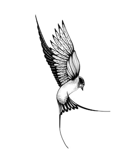 Doodle rondine uccello bianco e nero