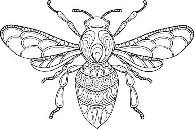 Illustrazione disegnata a mano dell'ape di vettore di scarabocchio