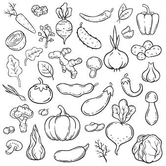 Scarabocchiare le verdure. carota, cipolla e cetriolo differenti disegnati a mano. insieme di vettore di cibo vegetariano zenzero, funghi e aglio, cavolo e pomodoro. illustrazione di cavolo e melanzana, cetriolo e pepe