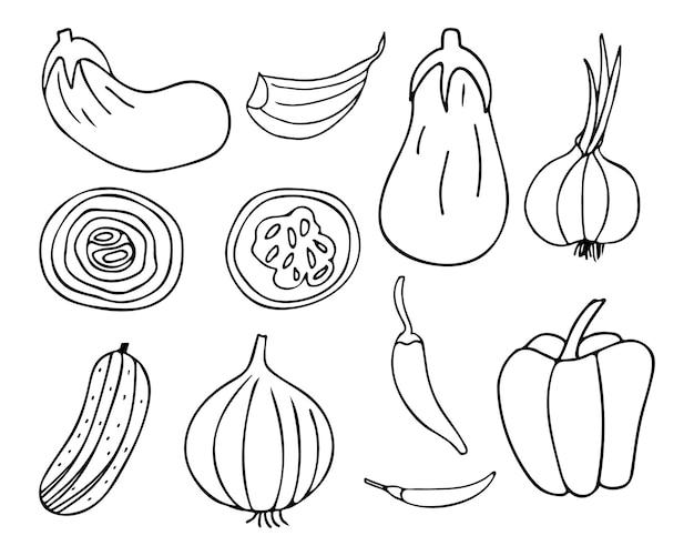Doodle raccolta di icone di verdure nel vettore. collezione di icone di verdure disegnate a mano nel vettore.