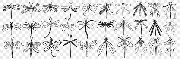 Insieme di doodle di libellula.